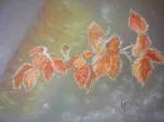hêtre-en-hiver1-150x112