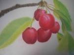 les-cerises-150x112