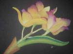 Cattleya-jaune-150x112