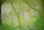 au-pays-des-Orchidées.-2-jpg-150x105