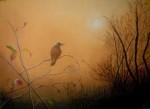 coucher-de-soleil-150x109