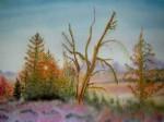 paysage-damerique-150x112