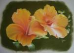 hibiscuse-jaune.2jpg-150x108