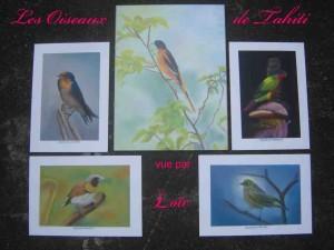 les-oiseaux-de-tahiti-2-300x225